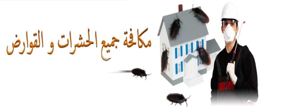 طرق مكافحة الحشرات في المنزل