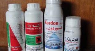 Household Insecticides 1